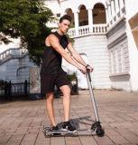 通りの大人そして十代のための小型電気スクーター