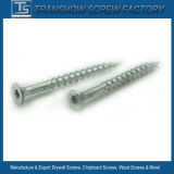 4.8*100mm Ruspert Finished Drywall Screws