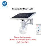 Garanzia tutta di IP65 12W 3years in un indicatore luminoso solare del giardino