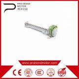 Motor linear elétrico do comprimento pequeno claro
