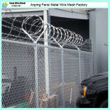 5X5cm Opening Black PVC Coated Chain Mesh Fence