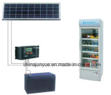 DC 12V 24V Solar Display 찬장 Refrigerator Sc 258L