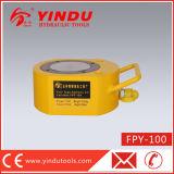 Gato hydráulico de efecto simple fino estupendo (FPY-100)