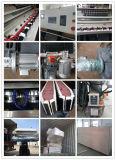 Tipo común y popular para la máquina de cristal de pulido del ribete