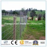 Cerca de alambre tejida nudo fijo/cerca del campo (fábrica)