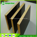 Film Faced Plywood off Building Material Construction