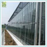 산업 직류 전기를 통한 강철 Truss 유리제 녹색 집