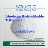 Trihidrato químico fino del clorhidrato de Irinotecan (CAS: 136572-09-3)