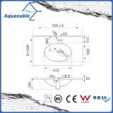 Einteiliges Badezimmer-Bassin und Countertop-Wanne (ACB7880)