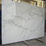 Tagliare per graduare le mattonelle secondo la misura smerigliatrice e Micro-Smussate bianche del marmo di Calacatta