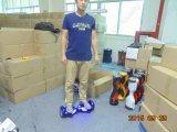 Hoverboards 검사 서비스, Hoverboards 품질 관리/심천에 있는 Pre-Shipment 검사