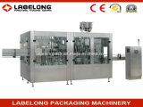 Máquina de rellenar del té automático del jengibre/equipo
