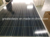Price do competidor 200W Solar poli Panel Mannufactures em China com High Efficiency