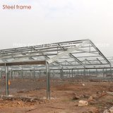 La pollicultura chiara della struttura d'acciaio si è liberata di con l'attrezzatura di produzione