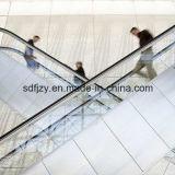 Fujizy automatischer Rolltreppe-Preis