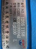 El cargador chino de la rueda de Sdlg LG936L LG956L de la marca de fábrica parte la bomba de engranaje Bgj2100 60301000042