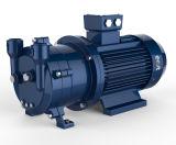 무쇠 /Ss 물자는 가구를 위한 2BV 파란 색깔 물 반지 진공 펌프를 만들지 않는다