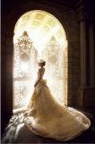 Юбка платьев венчания шнурка Mermaid прелестно белого полнометражного высокого ворота безрукавный съемная (LD1006)