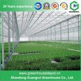 PE van de Groenten van de Tunnel van de landbouw de Serre van Polytunnel voor Verkoop