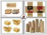 Altamente imballaggio del contenitore di carta kraft di Specisal di qualità