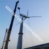 Turbina de vento do passo variável (programa completo)