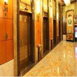 Chapa de aço inoxidável colorida 304 gravura a água-forte revestida para a decoração do elevador