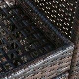 Furnirの健康なPEの全天候用ベストセラーのホーム柳細工のポータブルバー