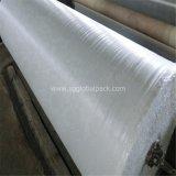 Tissu plat tissé blanc de l'usine pp de la Chine