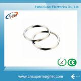 Heißester Verkaufs-permanenter seltene Massen-Ring-Magnet