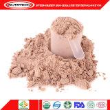 Großhandelsmolkeprotein-Goldschokolade Lieferanten vom Shenzhen-China