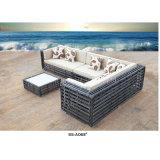 El nuevo negro de la colección curvó el sofá fijado para el patio