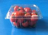 Offerta impaccante della FDA del cestello della frutta di plastica della bolla delle coperture superiori 250 grammi per i pomodori