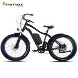 درّاجة كهربائيّة مع أطر سمين لأنّ [سنووي] أو شاطئ طريق