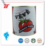 850g Veve Marca conservada del tomate Pasta de alta calidad