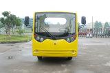 Carro eléctrico del transporte de cargo de 2 Seater