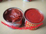 70g, 210g, doppio inserimento di pomodoro inscatolato concentrato di 400 G della marca di Vego
