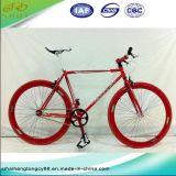 700c多彩なフレーム(SH0-FX01)が付いている鋼鉄単一の速度の自転車かバイク