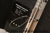 Doppeltes 8 Zoll-passive Zeile Reihen-Lautsprecher