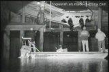 [لونغ رنج] [إير] ليزر [نيغت فيسون] آلة تصوير مع [إيب] [هد] عدسة لأنّ [3كم]