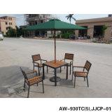 Meubles modernes, meubles extérieurs (AW-930TC)