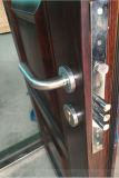 Дверь обеспеченностью новой конструкции стальная