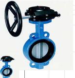 Válvula de borboleta do aço 304 inoxidável para o tratamento da água industrial do RO