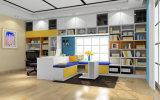 Мебель комнаты разбора конкретных хозяйственных ситуаций книги цвета Pritical белая (zj-005)