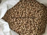 販売のための8mm 10mmのひよこ豆