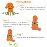 Проводка поводка собаки регулируемая & прочный комплект поводка & сверхмощный ворот поводка собаки джинсовой ткани для малой и большой собаки, улучшают для бежать ежедневной тренировки гуляя (малый)