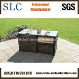 普及した藤の屋外の家具(SC-A7615)