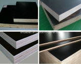 Timber di legno con Poplar Core Black Film Faced Plywood