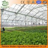 Alta calidad del tablero de la PC Multi-Span invernadero agrícola para la venta caliente