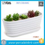 Caixa com nervuras cerâmica branca da planta de jardim do potenciômetro do projeto da cuba