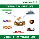 Isocertificate Cistanche Tubulosa Auszug Acteoside